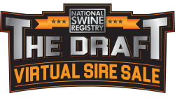 The Draft Virtual Sire Sale